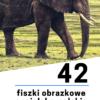 fiszki obrazkowe | PortWiedzy.pl